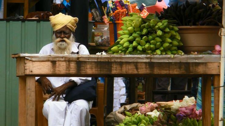 Après un ralentissement considérable de l'activité touristique durant près de 30 années de guerre civile, le Sri Lanka est aujourd'hui en passe de devenir un pays phare pour les voyageurs désireux d'expérimenter les merveilles de l'Asie.