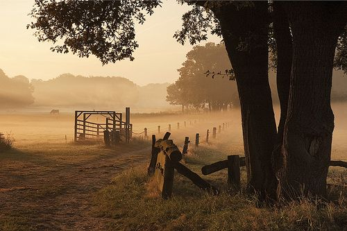 Wonderful Twente, situated in the East of The Netherlands, near the German border.  This is my homeground.