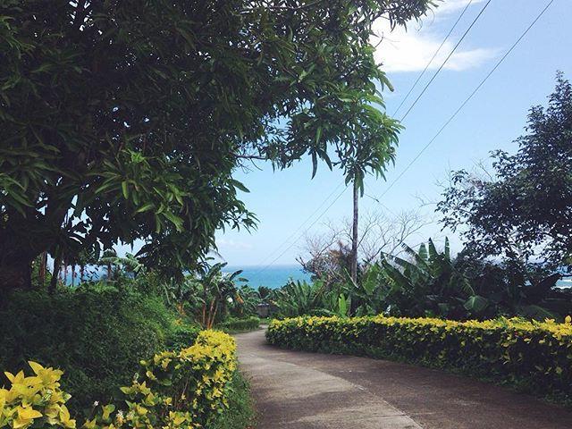 Когда-то (ощущение, что пол года назад) мы приехали этой дорогой ночью на трайсикле в серф-рай, на Пураран • Время возвращаться в Манилу тем же путем на перекладных Пураран-Барас-Вирак-Сан-Андрес-Табако-Легаспи-Манила • 🚌🚗🚤 #филиппины#путевыезаметки#океан#myway #travel #tourism #travelgram #meetingprofs #eventprofs #meeting #planner #events #eventplanner #popular #trending #micefx [Visit www.micefx.com for more...]