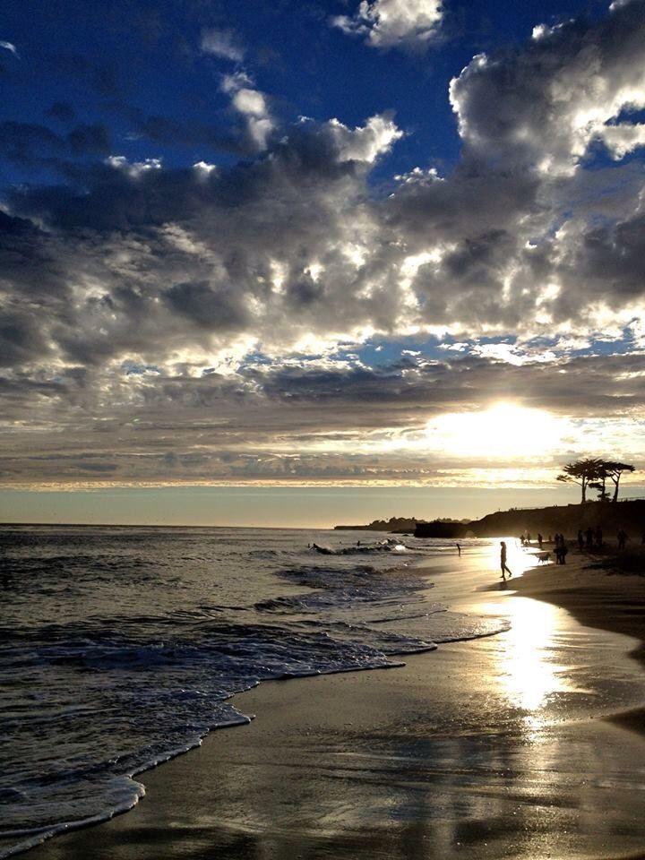 141 Best Ideas About Captiva Island On Pinterest