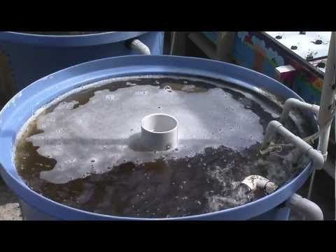 Purdue University's Introduction to Aquaponics. Good reference to commercial Aquaponic techniques