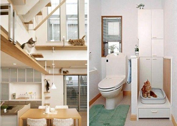 ネコちゃんにとってのドリームハウス!旭化成が作るペット共生住宅が海外で話題に!