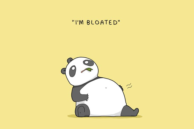 12 Excuses Pandas Give Not To Have Sex   Bored Panda