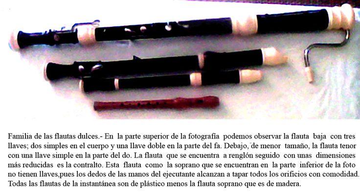 flauta-familia.gif (1088×589) sopranino, flauta dulce, contralto y el bajo
