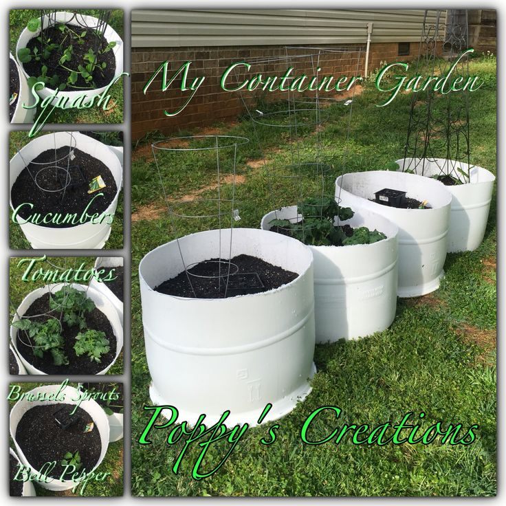 Poppy's Creations--Finally I got my container garden up and running (sort to say). We used two 55 gallon food grade barrels, cut them in half, drilled holes in the bottom and around the bottom edge for drainage, added gravel for drainage and potting mix packed with nutrients to help with growth for up to 9 months. Progress pictures to be posted as we grow!
