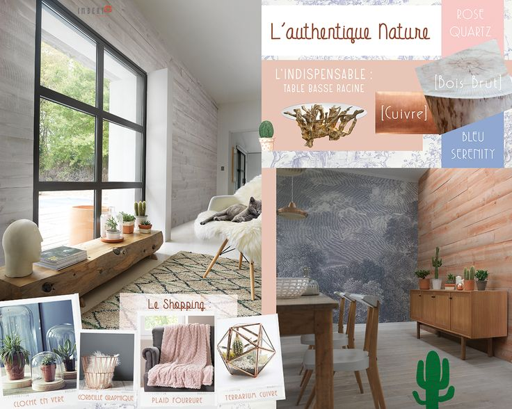 Découvrez notre planche d'inspiration sur le Bois et l'authentique nature. Tout pour un intérieur à votre image : http://www.imberty.fr/fr/inspirations/  Imberty vous propose des parements et parquets en bois pour habiller votre intérieur.  Complétez les produits Imberty avec les tendances actuelles : cactus et plantes grasses, cloche en verre, plaid fourrure, terrarium en cuivre. Du cuivre, du rose quartz, du bleu serenity et du bois brut : c'est parti! #bois #rose #bleu #cactus #terrarium