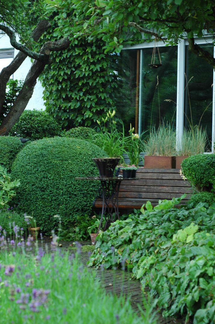 grön trädgård - Sök på Google