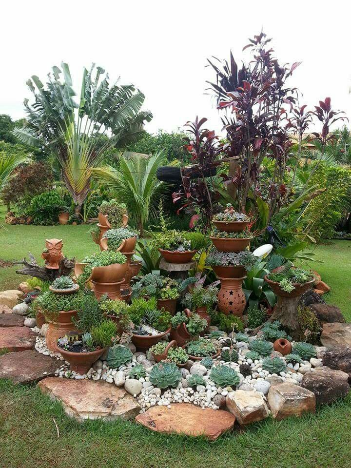 Lovely little island of succulents in a tropical landscape. #SerraGardens_succul