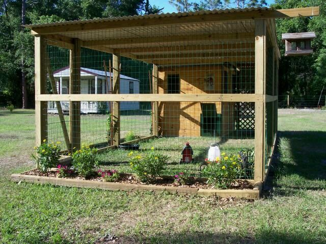 Pin By Chicken Coop Hacks On Cheap Chicken Coop Ideas