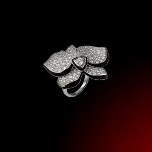 Caresse d'orchidées par Cartier