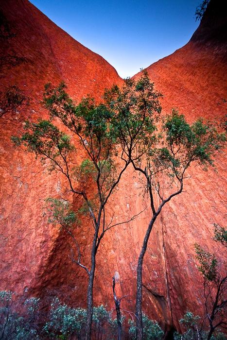 Walls Of Uluru  Uluru-Kata Tjuta National Park, Northern Territory, Australia    To put this into perspective Uluru stands 348 metres above the plains.