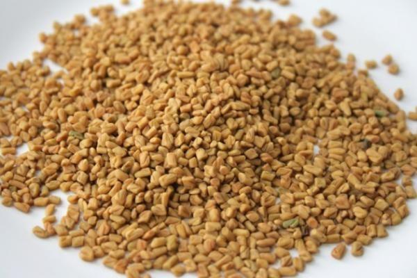 Como cultivar feno-grego - 5 passos - umComo