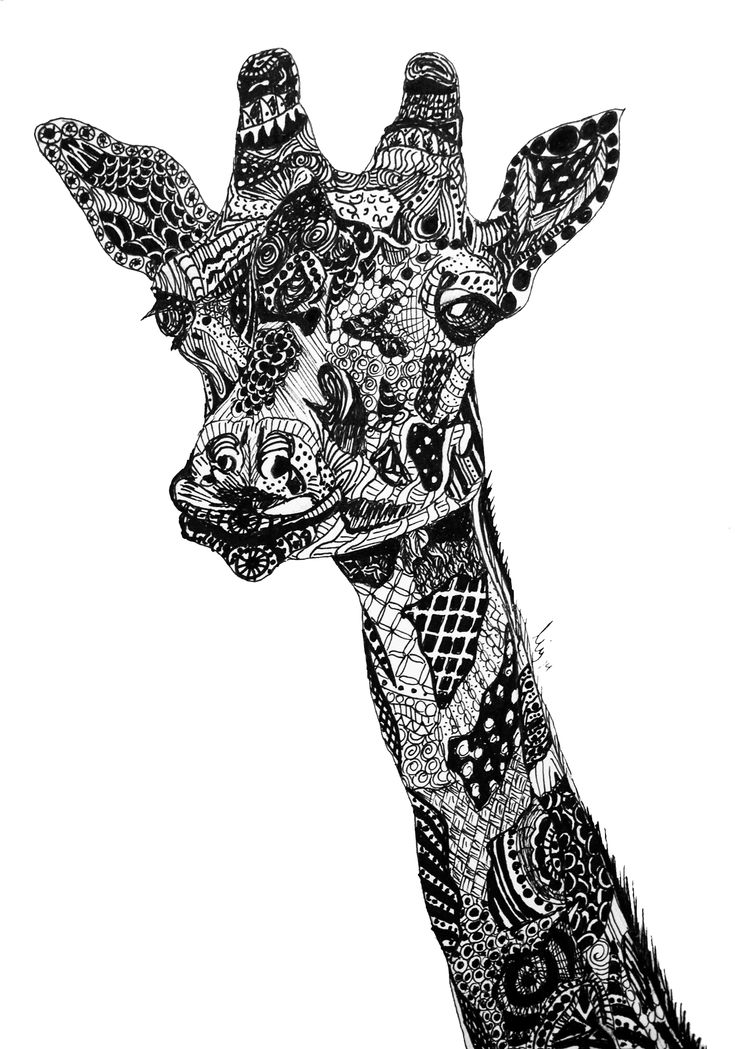 Zentangle Giraffe By Me Another Zentangle Drawing I Made