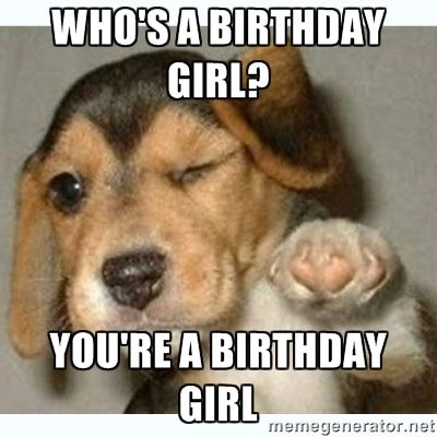 Who's a birthday girl? You're a birthday girl - fist bump puppy | Meme Generator memegenerator.ne                                                                                                                                                     More