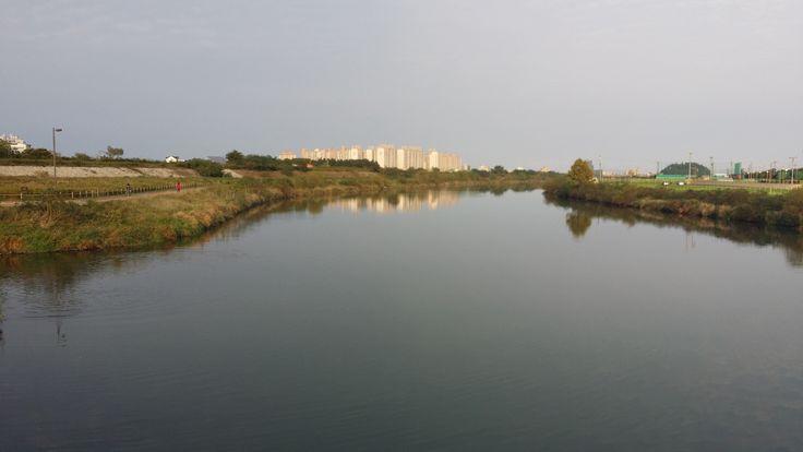 강원도 강릉시의 젖줄인 남대천 전경, 자전거와 보행자 코스와 운동시설이 구비되어 있어 운동코스로는 최상의 장소입니다.
