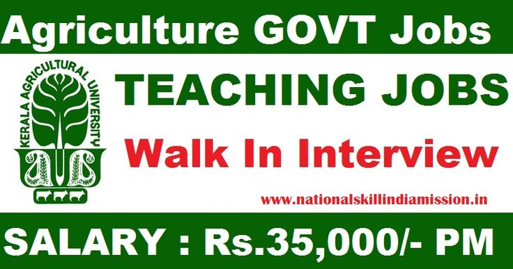 LECTURER VACANCIES  Kerala Agricultural University-recruitment-02 vacancies-Teaching Assistant-Pay Scale : Rs35000/-Walk-in-Interview-Apply Now-Last Date 16 February 2017 KAU Job Details :  Post Name : Teaching Assistant No. of Vacancies : 02 Posts Pay Scale : Rs35000/- (Per Month) Eligibility Criteria :  Educational Qualification :  For more details click: