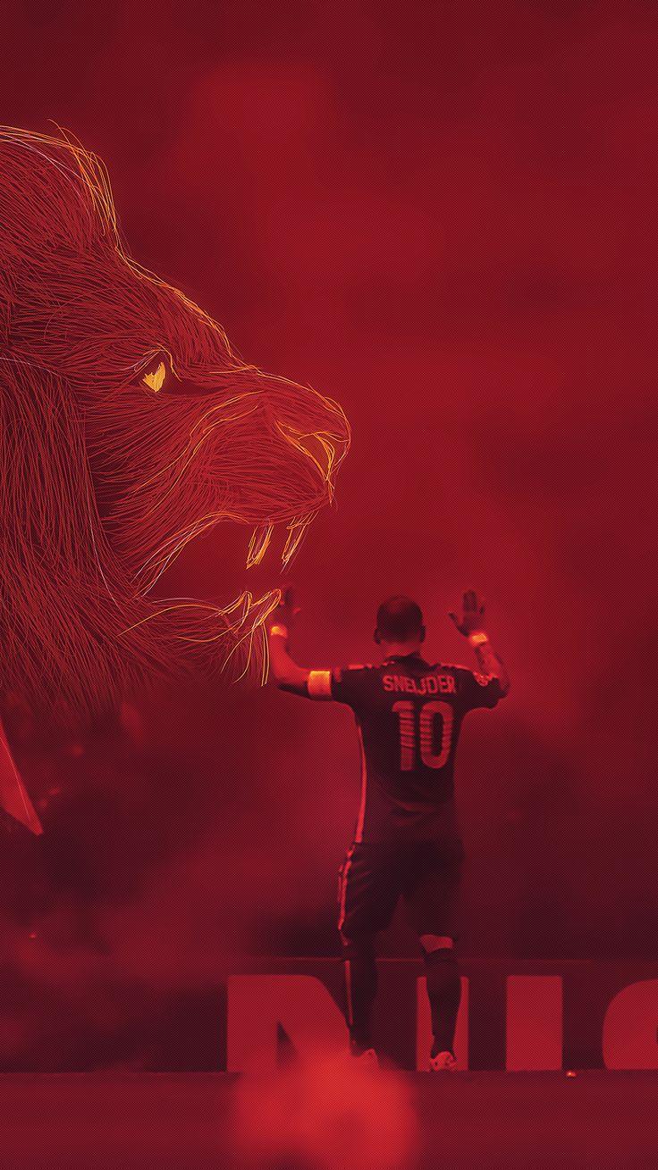 #galatasaray #cimbom #sneijder #lion
