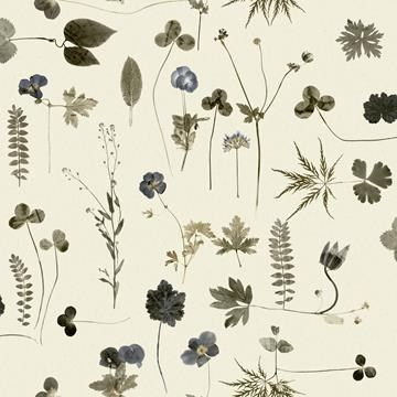 Botanica blå/tapeter från Eco® (SD606-01) hos Engelska Tapetmagasinet. Köp fraktfritt online eller besök butiken i Göteborg.