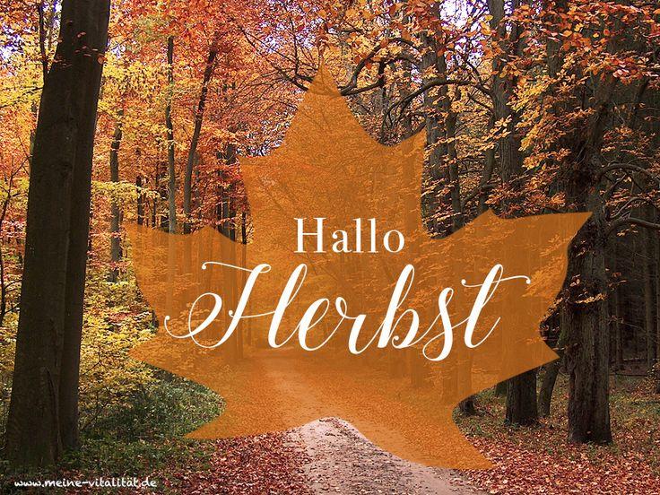 Hallo Herbst! Wir freuen uns auf Waldspaziergänge, Herbststürme, Kaminabende, Kürbissuppen, Drachensteigen lassen, leckeren Tee u.v.m.