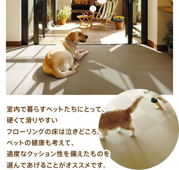 室内で暮らすペットたちにとって 硬くて滑りやすいフローリングの床は泣きどころ ペットの健康も考えて 適度なクッション性を備えたものを選んであげることがオススメです ペット ペットの健康 犬