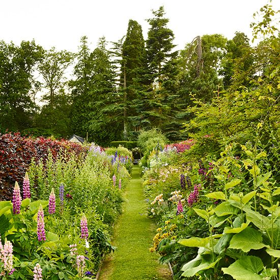 Flowers Garden Pictures Ideas annual cut flower garden layout Traditional Garden With Grass Pathway And Flowers Garden Design Ideas Photo Gallery Homes