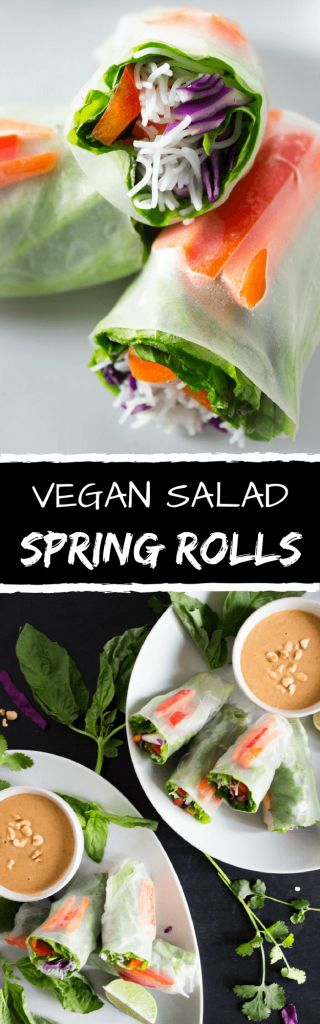 Vegan Salad Spring Rolls - A fresh and delicious way to eat a rainbow medley of vegetables. Accompanied with a sweet & slightly spicy peanut sauce. Perfect for a quick and easy lunch, dinner, or even as a snack.   passmesometasty.com