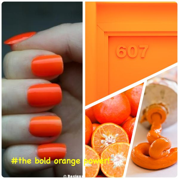 The bold and the orange!