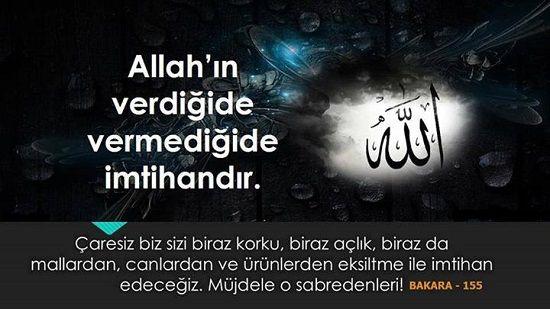 Gönül Tahtımızın Sultanı Peygamber Efendimizin Hayatı.: Bakara - 155. Ayet ve Anlamı.