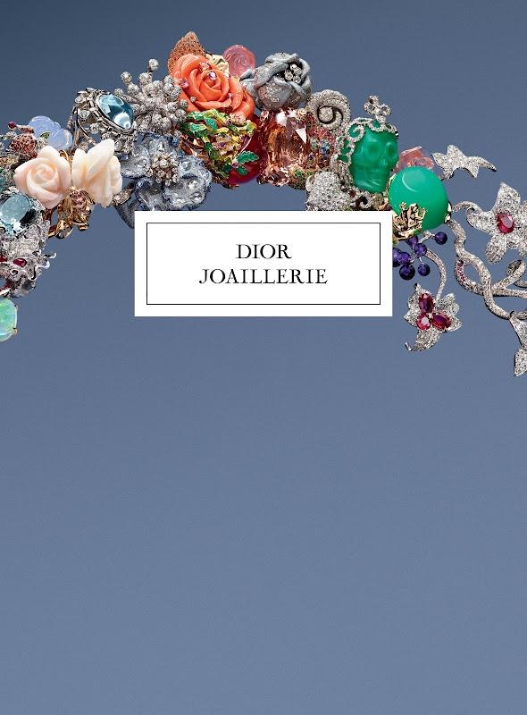 Dior jewelry book