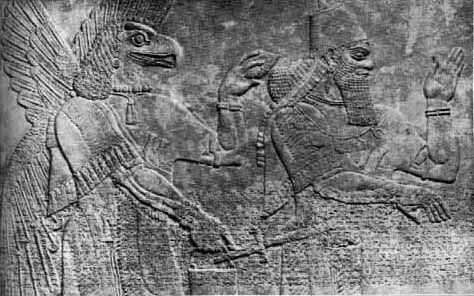 Annunaki clearly placing an acorn shaped representation of the amigdala into a man, prince or other Babylonian Sumeran implanting us with enslavement to serotonin?