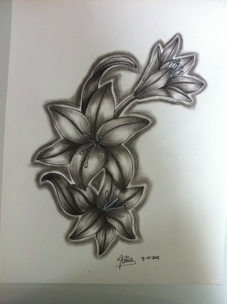 Tattoo Design #djuul #5493 #illustration #tattooart