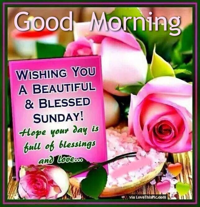Good Morning Wishing You A Beautiful And Blessed Sunday good morning sunday sunday quotes good morning quotes happy sunday sunday blessings sunday quote happy sunday quotes good morning sunday beautiful sunday quotes sunday quotes for friends and family