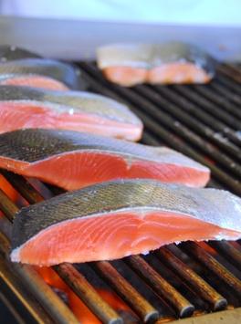Coho Salmon Recipes
