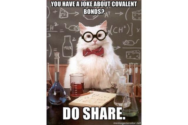 The Best of the Chemistry Cat Meme: Chemistry Cat - Covalent Bond
