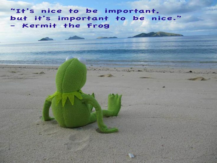 """Wisdom from Kermit the Frog: """"It's nice to be important, but it's important to be nice."""""""