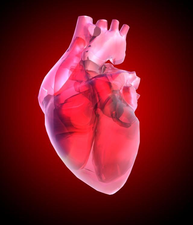 El pericardio, la capa que recubre el corazón, puede sufrir alteraciones y enfermedades infecciosas por bacterias o virus. Te presentamos cinco enfermedades del pericardio.