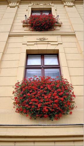 Szeged, HUngary
