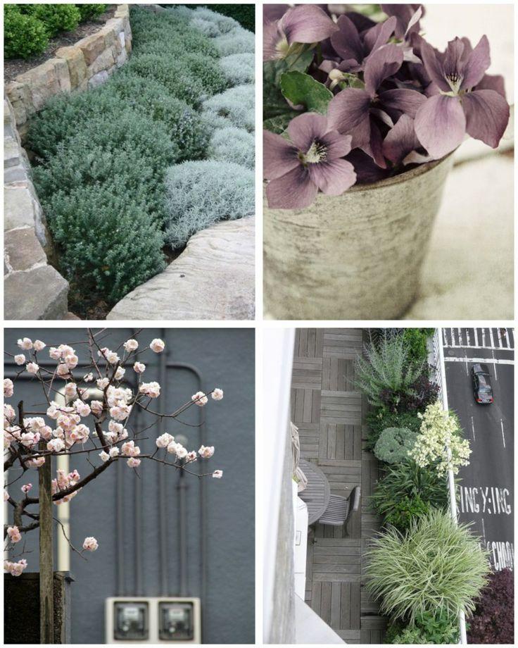 Grey garden palette