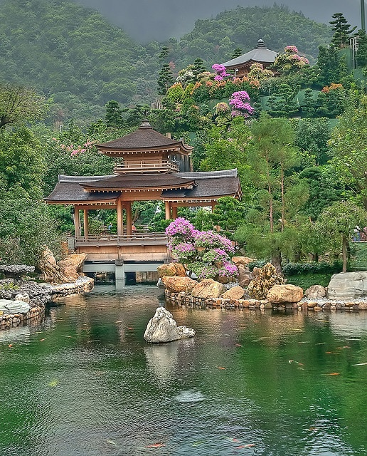 """""""Nan Lian Garden"""" lies right next to Chi Lin Nunnery and is just as beautiful, with pavilions, goldfish ponds with water lilies, rock - gardens and manicured Bonsai trees...     By puliarf, via Flickr"""