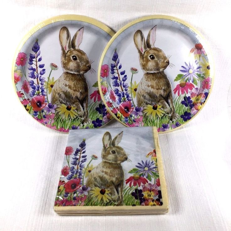 Spring Rabbit Easter Bunny Paper Lunch 2 Ply Napkins and Plates 20 Count New #Unbranded #Easter
