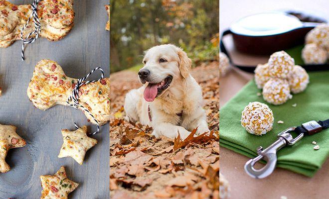 Verwen jouw trouwe viervoeter op Dierendag (of elke andere dag) met deze lekkere, zelfgemaakte hondenkoekjes. Kwijl gegarandeerd!
