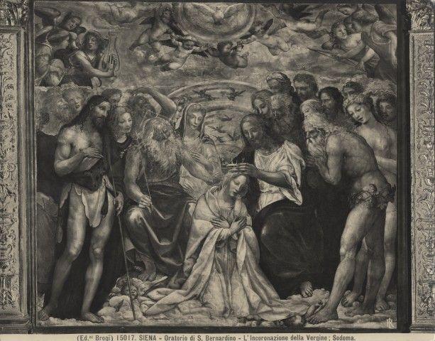 Sodoma, incoronazione della vergine - Oratorio della Compagnia di San Bernardino - Wikipedia