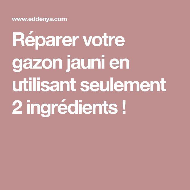 Réparer votre gazon jauni en utilisant seulement 2 ingrédients !