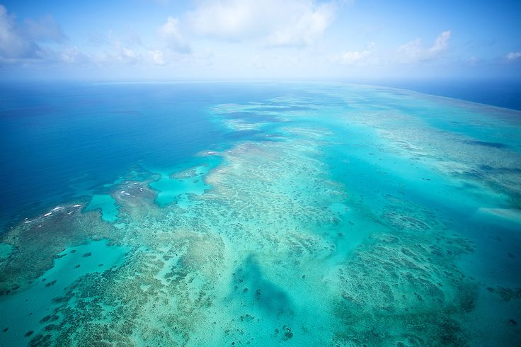 Find which Great Barrier Reef tour is perfect for you with our handy guide #thisisqueensland
