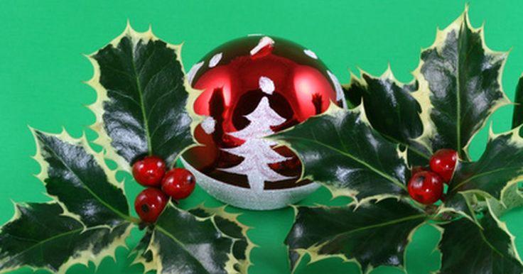 El significado de los colores de la Navidad. El rojo del traje de Santa Claus y de las bayas de invierno, el verde de los pinos de Navidad y de los abetos, el blanco del invierno y de la nieve, y el oro reluciente de las velas y las luces de Navidad, todos son colores usados tradicionalmente para celebrar la temporada navideña. Cada uno de ellos representa la Navidad en tradiciones ...
