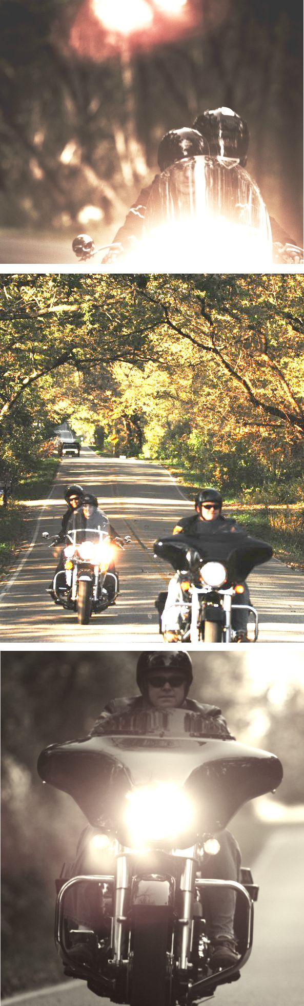 7 motorcycle road trips for fall
