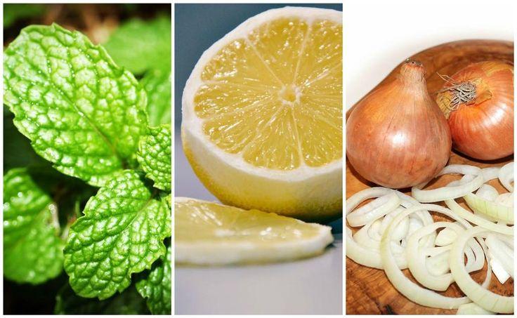 6 remedios naturales para los moretones y torceduras