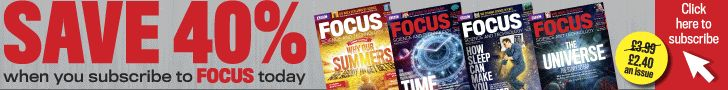 Does green blood exist?   Focus Magazine