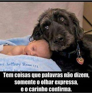 ISSO MESMO! ❤️❤️❤️ #maedepet  #amorincondicional  #maedecachorro  #paidecachorro  #filhode4patas  #cachorro  #cachorroterapia  #cachorroétudodebom  #caopanhia  #caopanheiro  #petmeupet