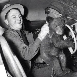 Smokey the bear in his Piper Pacer. Photo credit EAA Vintage division via Facebook. » Taildraggers, Inc.